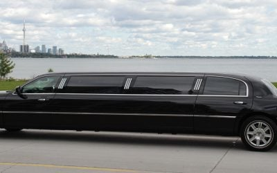 Charlotte Limousine types